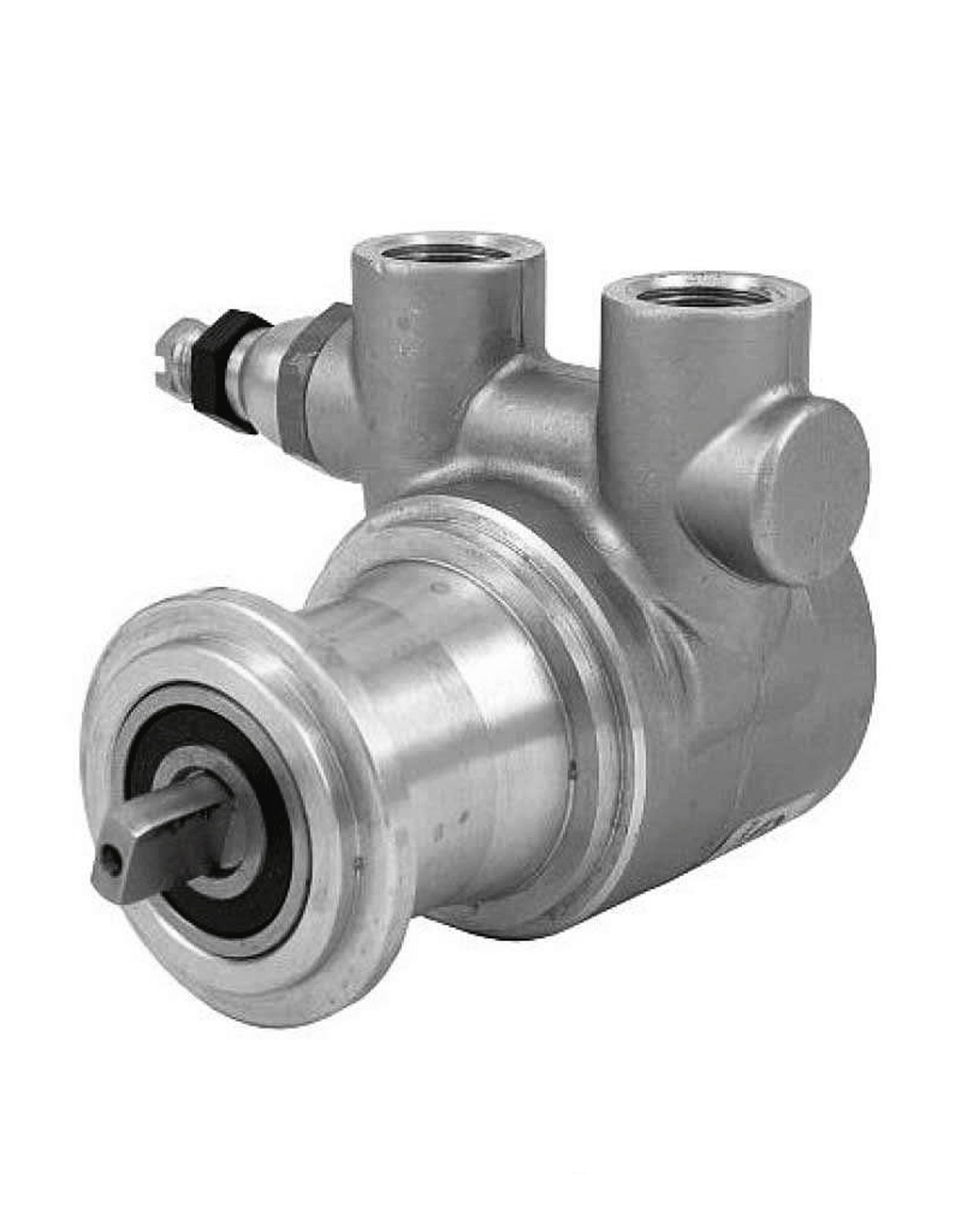 Rotary vane pump for food industry use